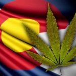 colorado-marijuana_1352303424138_323563_ver1.0_320_240