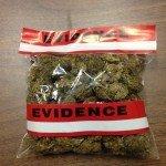 marijuana_photo
