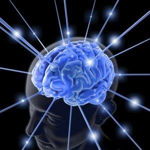 brain13-300x299