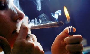 Recreational cannabis use could be legal after the votes