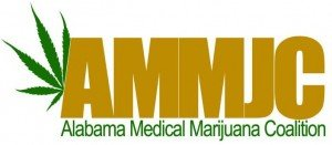 org_AMMJC