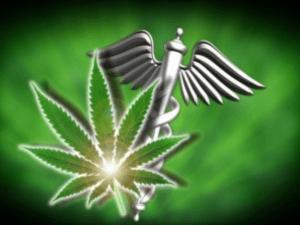 Marijuana.com.