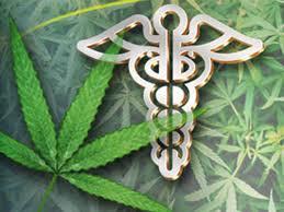 maryland-marijuana