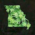 missouri-marijuana
