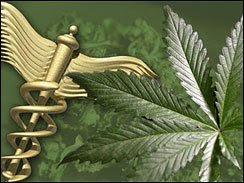 cannabis-crohns