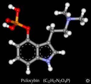 faq_1psilocybin