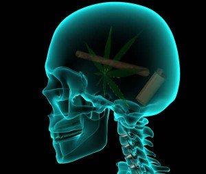 Weed-Brain