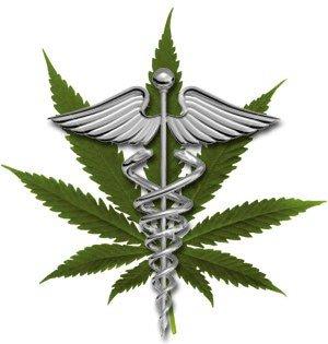Medical Cannabis Oil