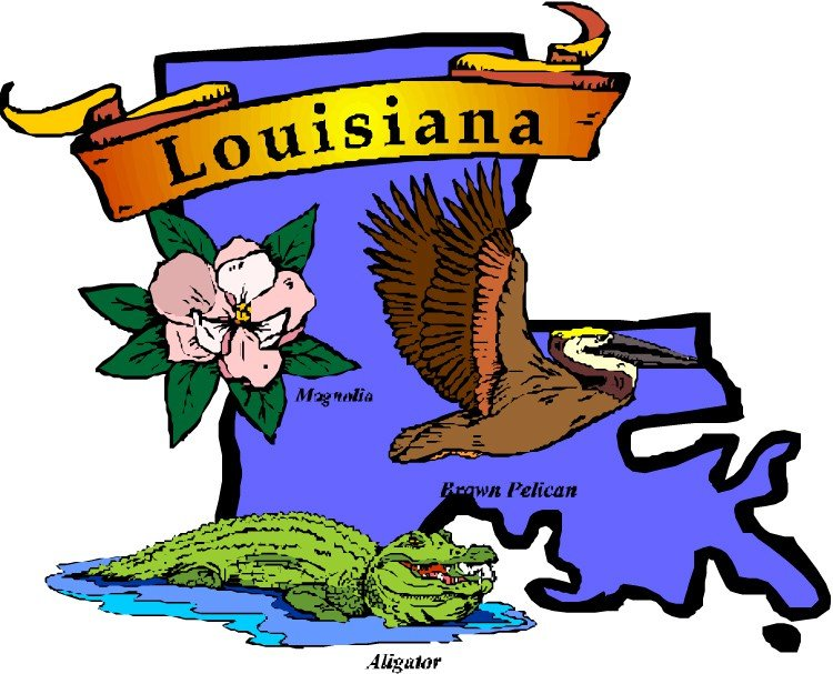 louisiana marijuana possession laws