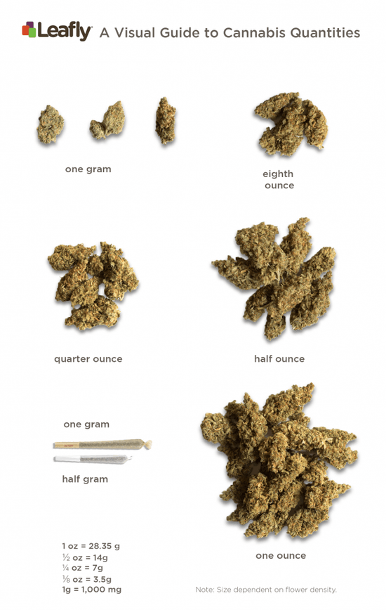 Leafly Visual